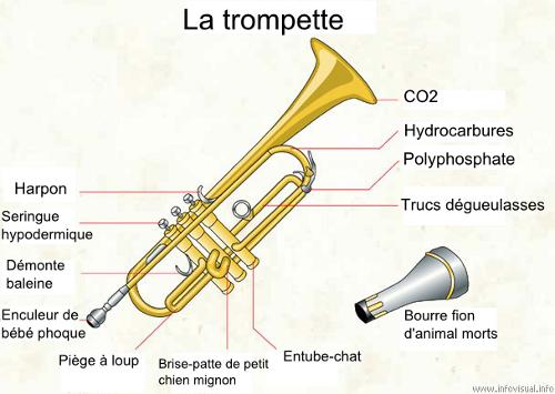 trompette_de_la_mort_01
